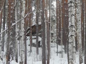 Марков Камень. Гора в Бажовских местах. По дороге на гору