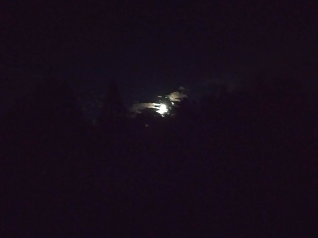 """Ночь на Поляне Юриса. Летают """"шарики""""..."""